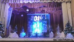 Новый 2016 г. (33)